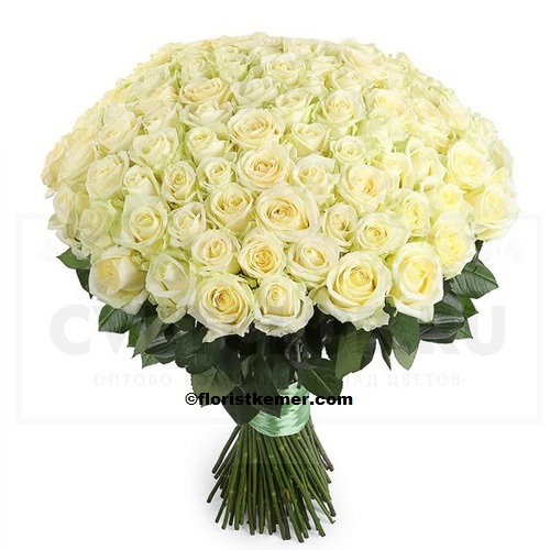 kemer florist 101 Rose Bouquet White