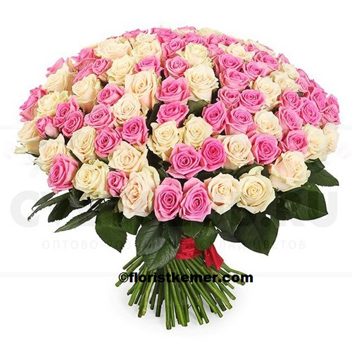 kemer florist 101pc White And Pink Rose