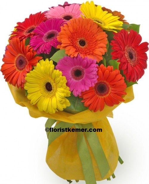 kemer florist 15pc Gerbera Bouquet