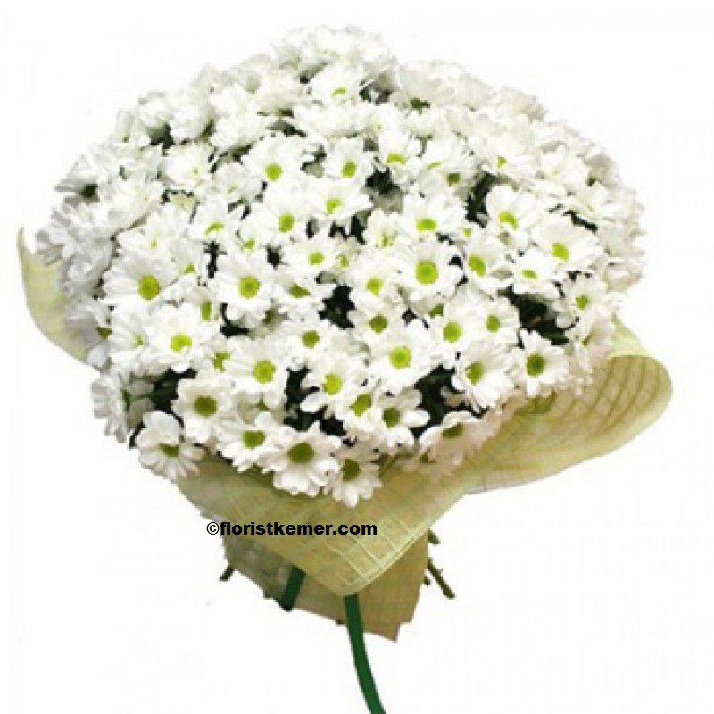kemer florist 29pc White Daisy Bouquet