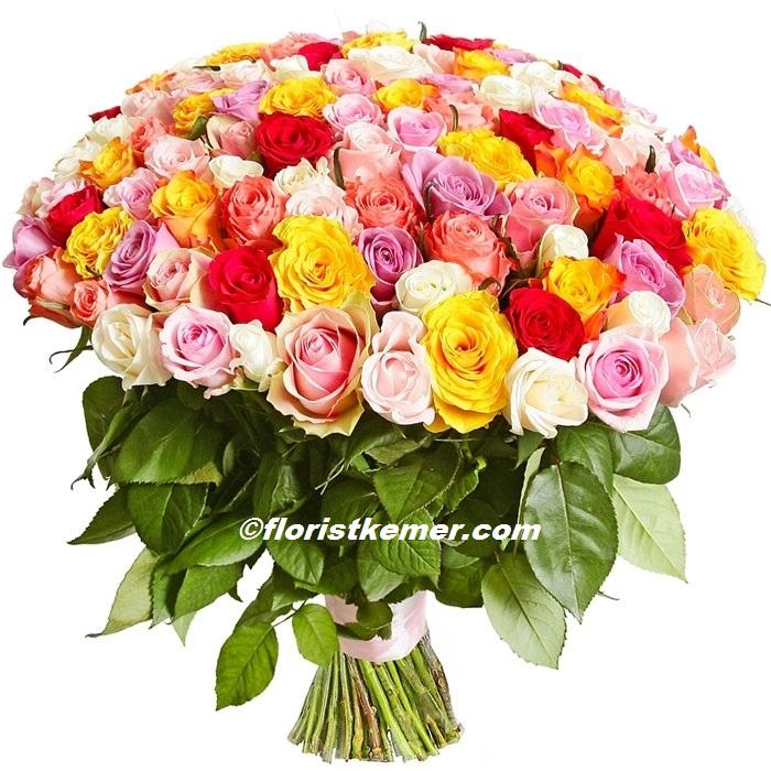 kutuda orkide gül arajman 101 Adet Renkli Güller