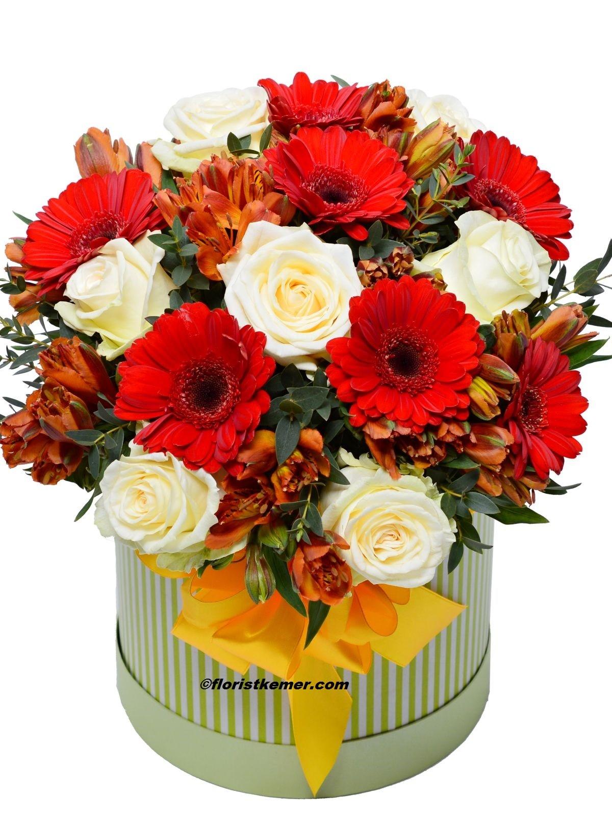 kırmızı gül 21 adet Kutuda Celbera&Güller